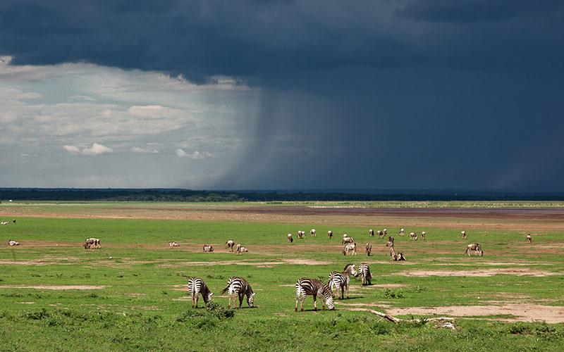 Approaching Storm in Lake Manyara National Park