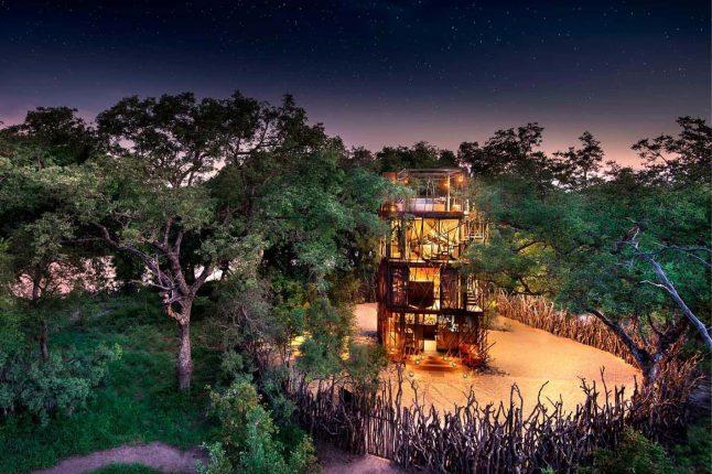 best-treehouses-ngala-treehouse-2
