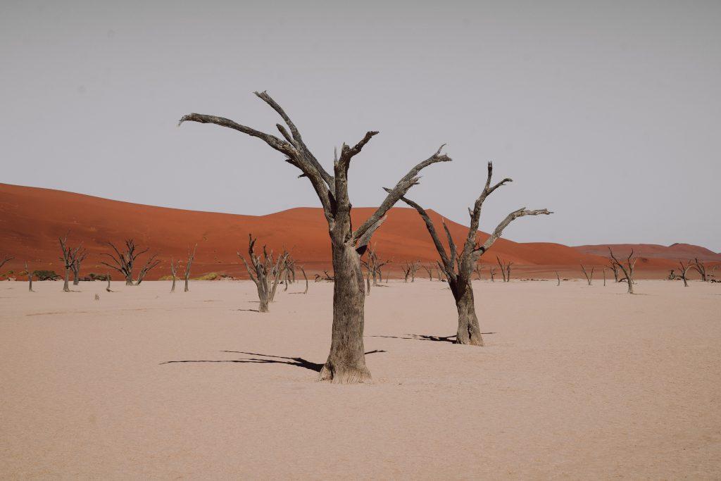 Best isolated lodges in Namibia | Ubuntu Travel