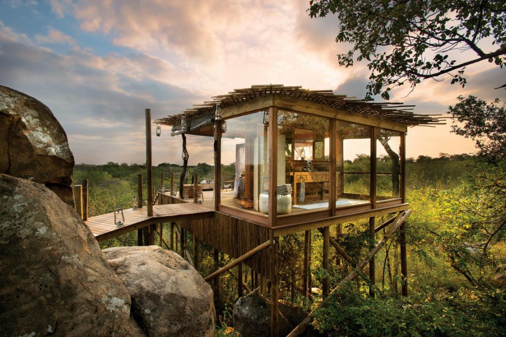 lion-sands-ivory-lodge-kingston-treehouse