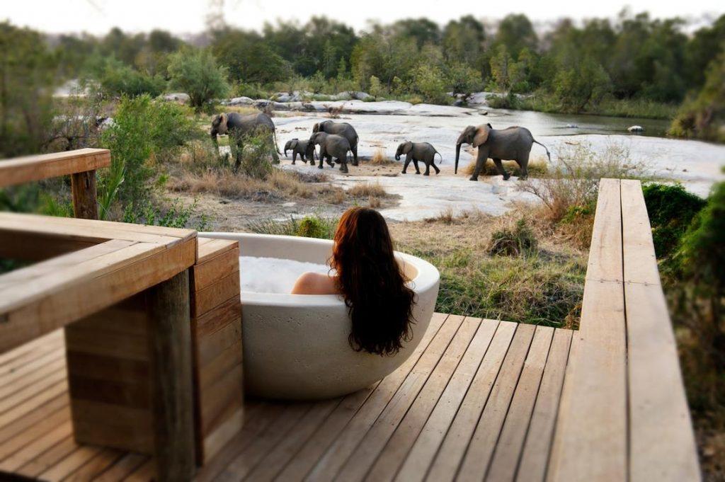 londolozi-lodge-south-africa