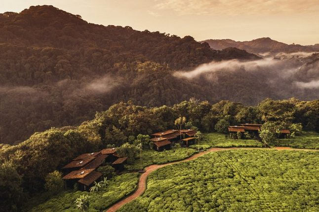 one-and-only-nyungwe-house-
