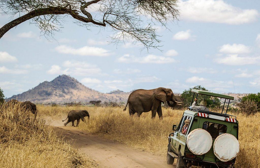 Tanzania travel guide | Ubuntu Travel Group