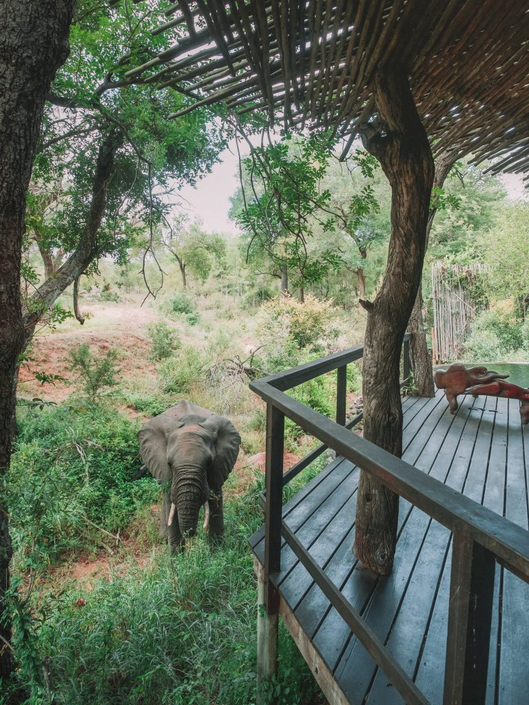 Singita Boulders South Africa