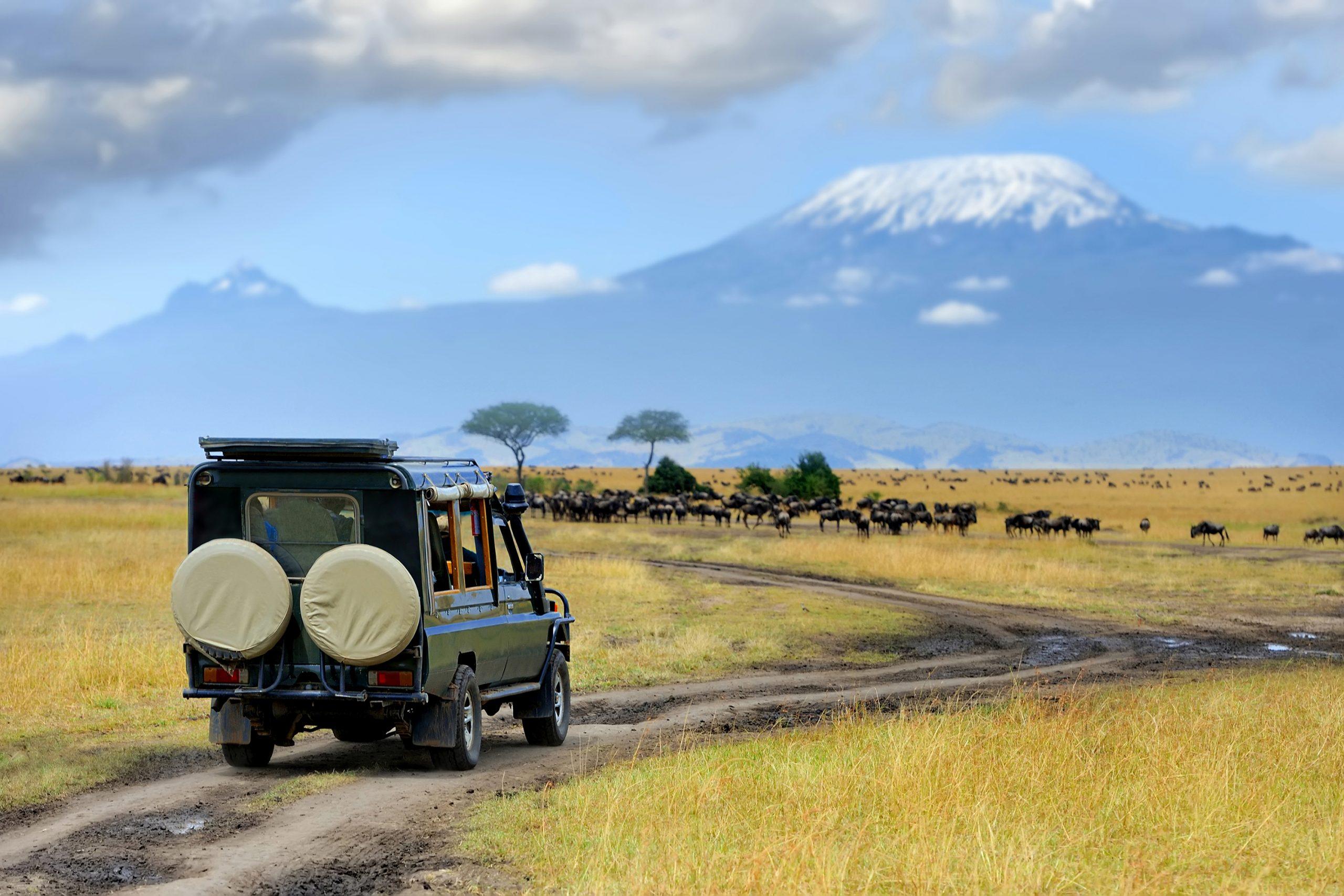 Amboseli National Park