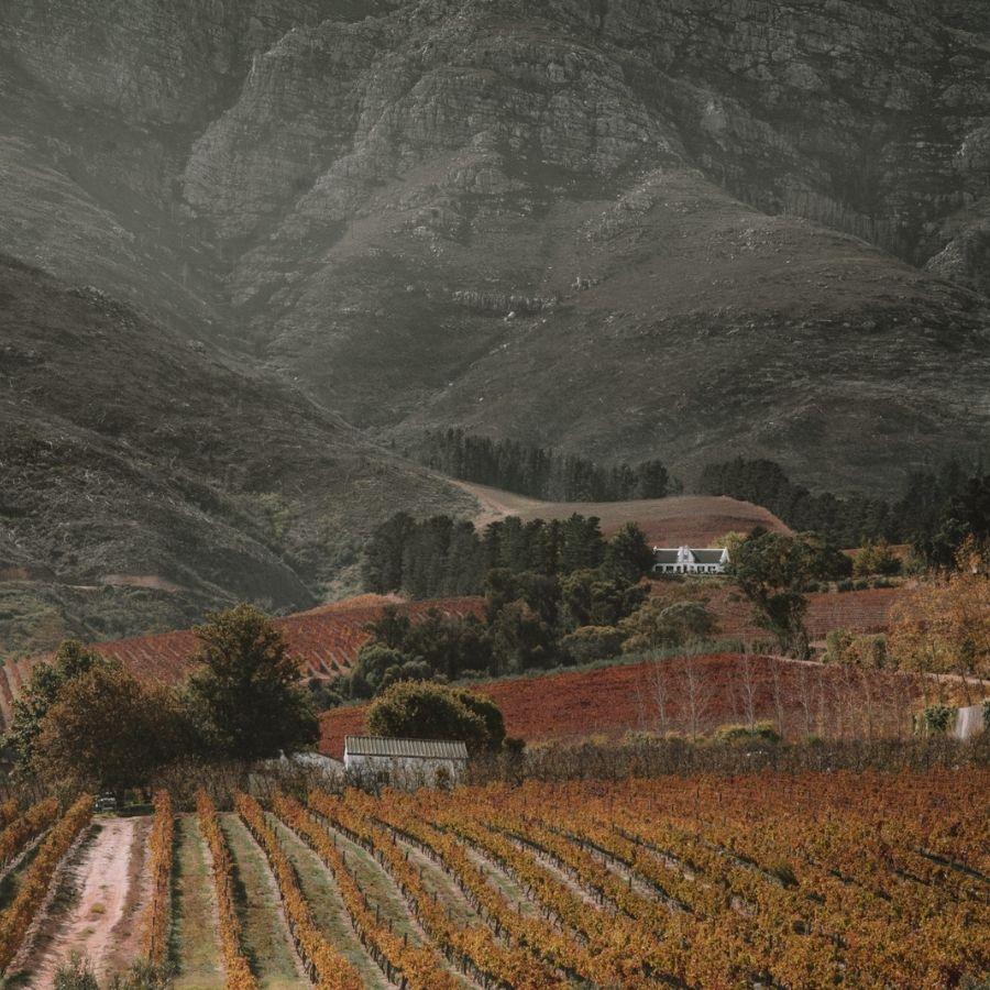 Fine Wines & Wilderness